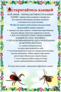 1244816651_osteregajtes-kleshhej